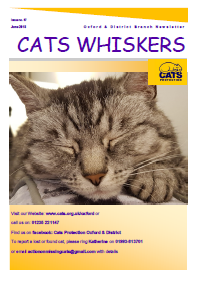 Sample cover of Cat's WhiskersD our quarterly newsletter