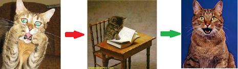 Fear ... Learn....Relax!