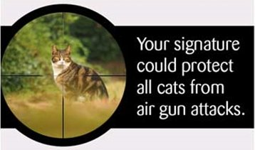 Cats are in the sights of unregulated air gun users