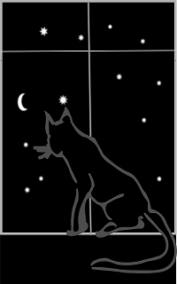 Black cat in window with dark starry night outside
