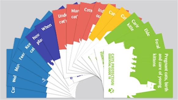 Cat Care leaflets