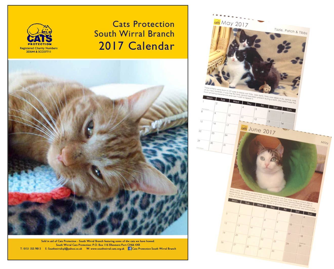 Cats Protection Calender