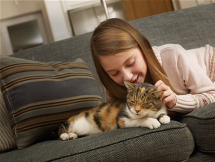 Little girl with cat on sofa