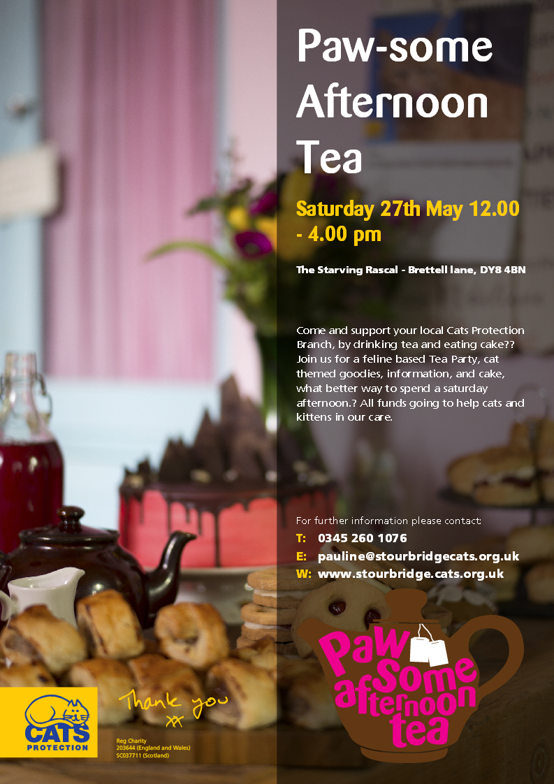 Tea Party Sat 27th May 2017