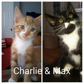 Charlie and Max