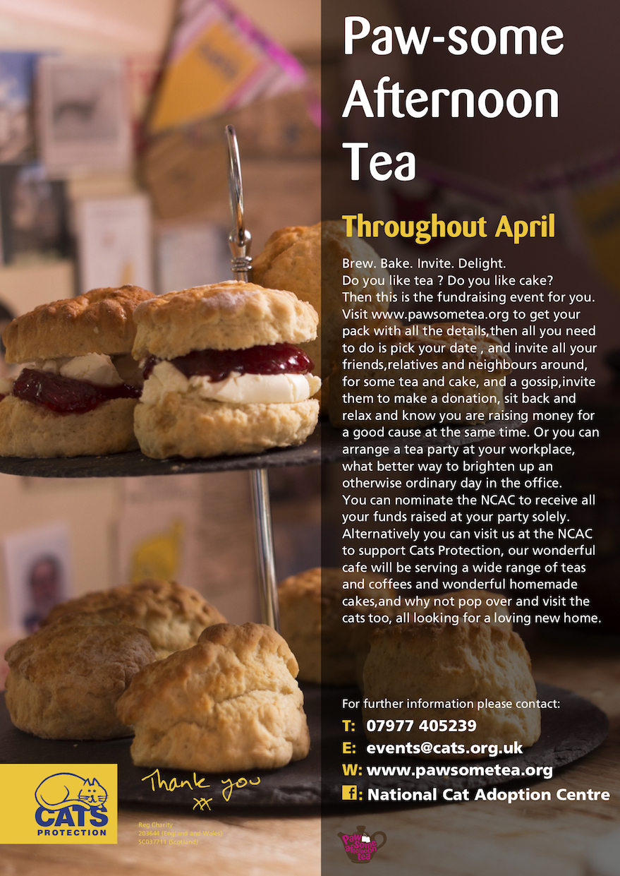 Pawsome tea flyer