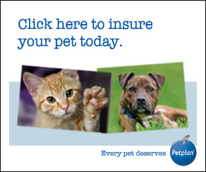 PetPlan Charity policy banner