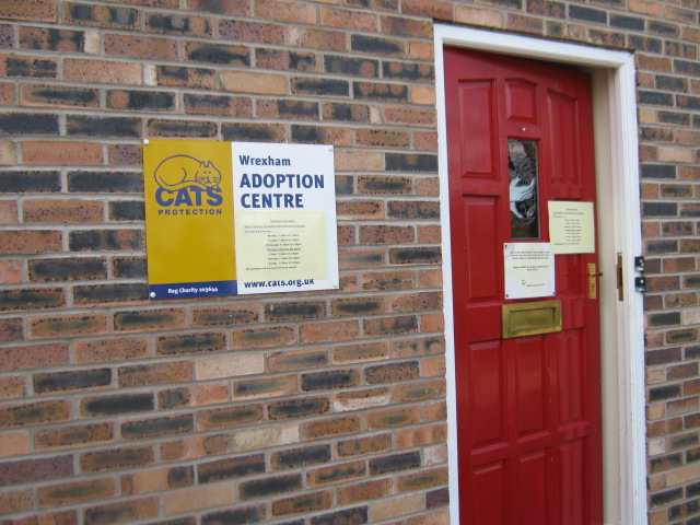 Cats Protection Madeira Hill Wrexham