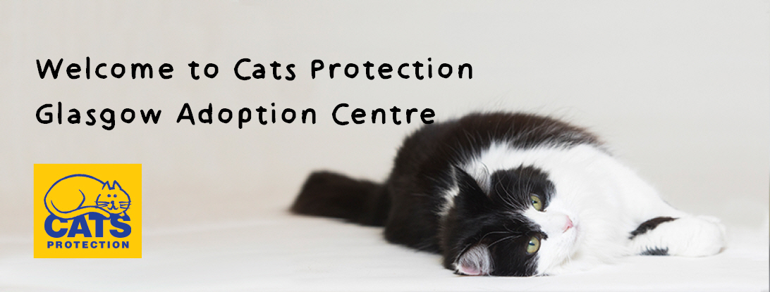 Welcome to Cats Protection