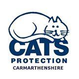 Cats Protection Carmarthenshire Facebook