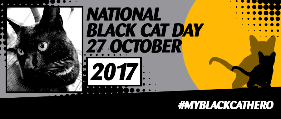 Black Cat Day Banner