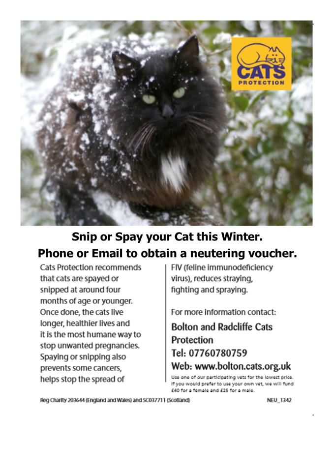 Winter Neutering Campaign