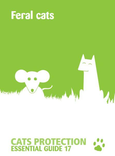 Feral Cat Guide