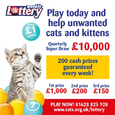 Cats Protection lottery
