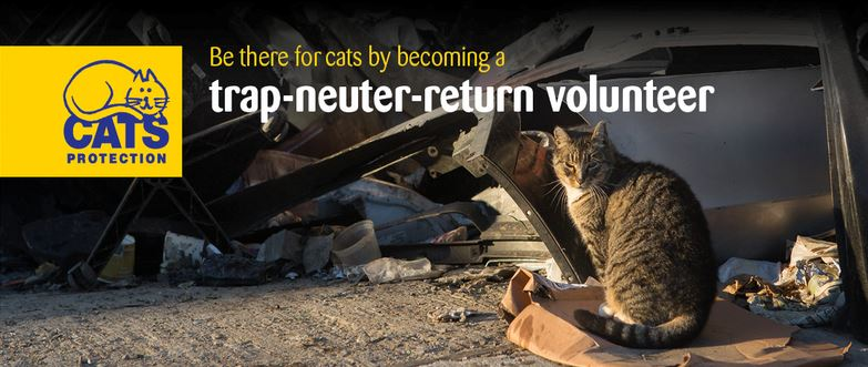 Trap Neuter Return