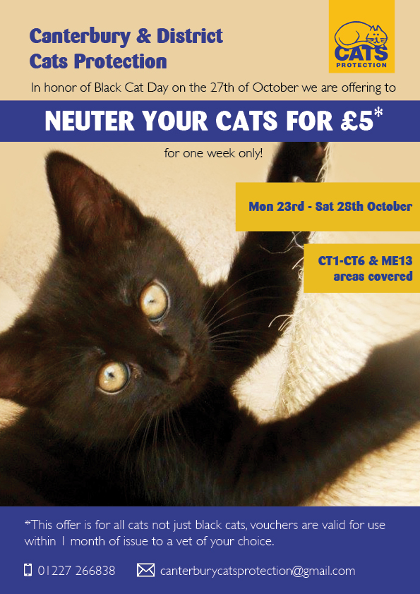 Vouchers To Get Cats Neutered