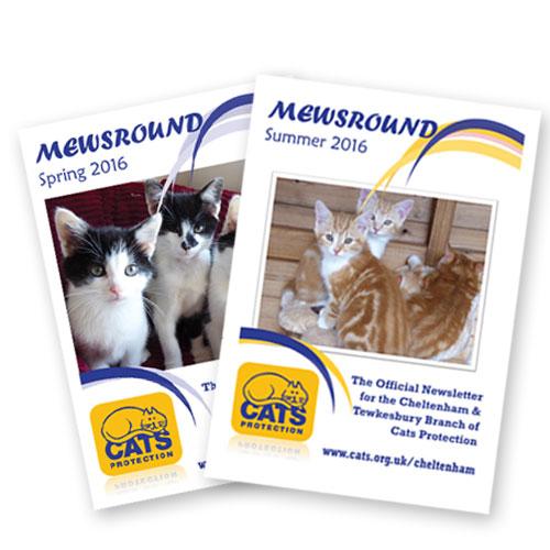 mewsround magazines