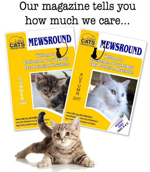 Mewsround - our branch magazine