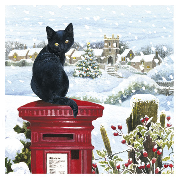 we are delighted to announce that our cheltenham charity shop is now selling a special range of christmas cards calendars and 2019 diaries - Animal Charity Christmas Cards
