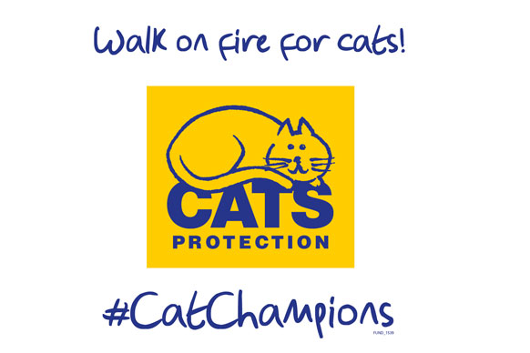 walk on fire for cats logo