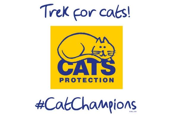 Trek for cats
