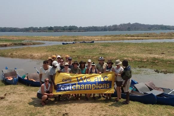 Zambia cat champions