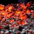 Would you walk over hot coals for cats?