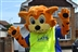 Canvey Carnival Festival of Fun