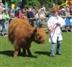 Highland Fling Country Fair at Graves Park