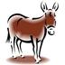 Twyford Donkey Derby
