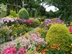 Cottesmore Farm Open Garden