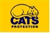 Cats Protection Spring Fete