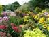 Cottesmore Farm Open Garden