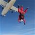 Red Devils skydive in Salisbury