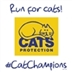 Register your own run for Cats
