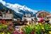 The Alps Trek