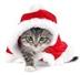 Christmas Bazaar- NEW VENUE!