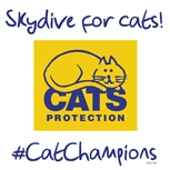 Skydive for cats