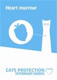 Heart murmur leaflet cover