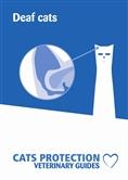 Deaf cats leaflet cover