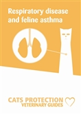 Respiratory disease leaflet cover
