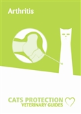 Arthritis leaflet cover