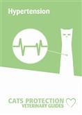 Hypertension leaflet cover
