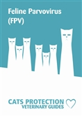 FPV leaflet cover