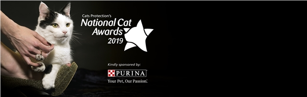 Cats Protection - UK's Largest Feline Welfare Charity