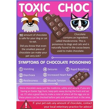 Toxic Chocolate