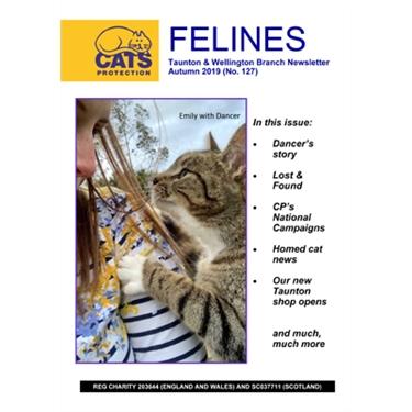 Felines Newsletter Autumn 2019