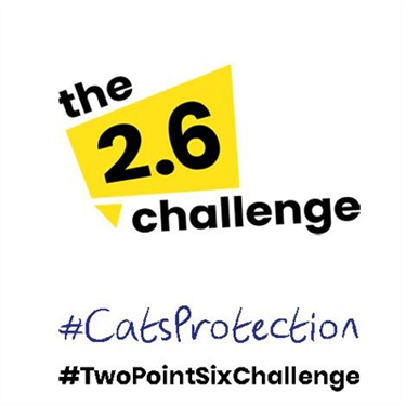 Support Cats Protection in The 2.6 Challenge