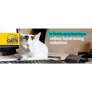 Online Fundraiser needed