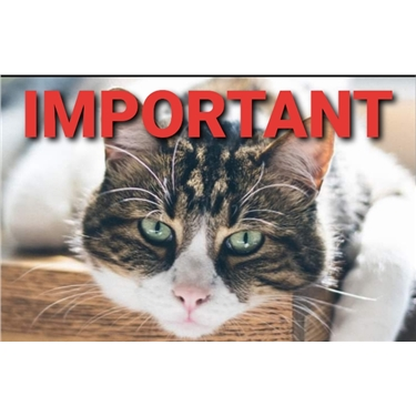 Missing pet scam warning